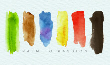 Palm to Passion