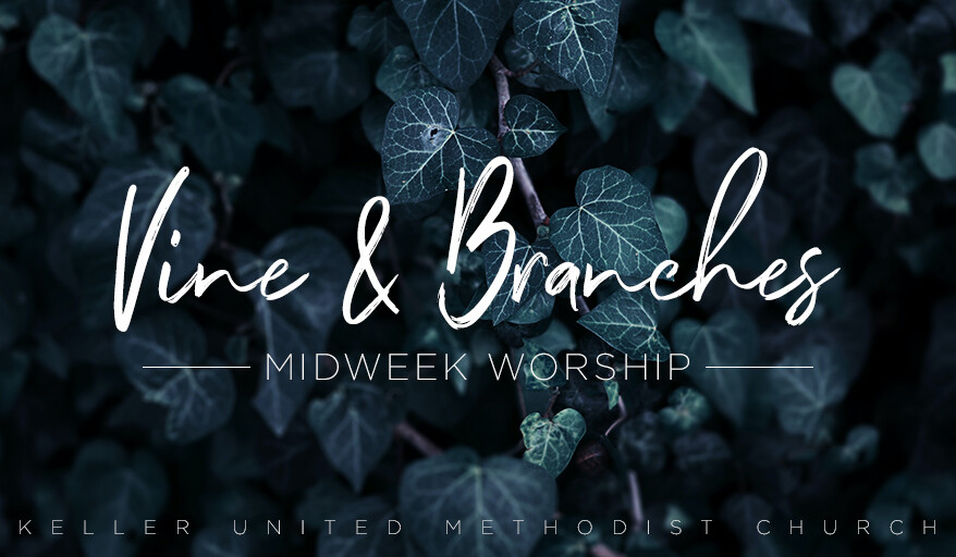 Vine and Branches Midweek Worship